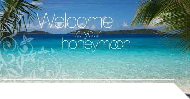 Welcome To Your Honeymoon Palm Image