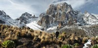 Mount Kenya Trek