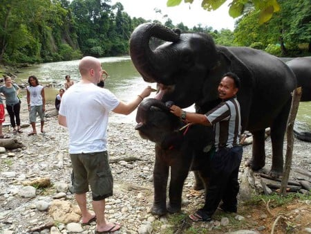 Rod Fam Indonesia 2011 - Feeding elephants