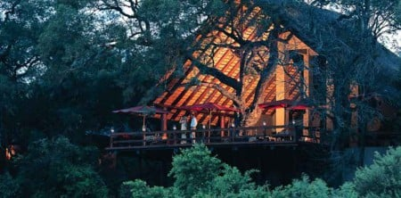 Londolozi, main camp viewing deck