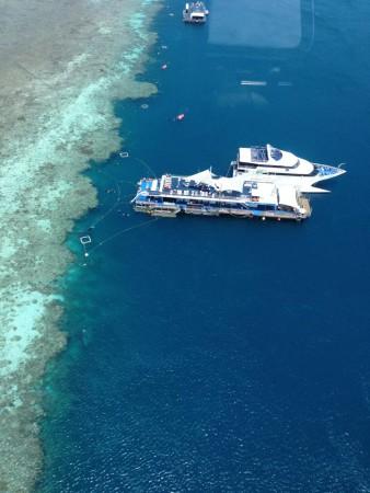 Reef world