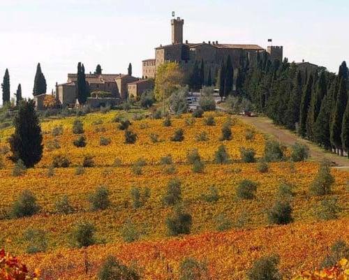 Castello Banfi – Il Borgo, Tuscany