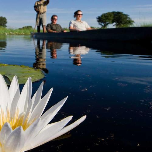 Jacana Camp, Okavango Delta