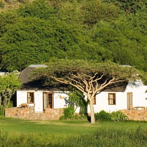 Bushmans Kloof, Cederberg
