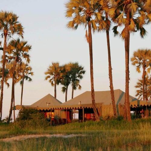 Jack's Camp and San Camp, Kalahari
