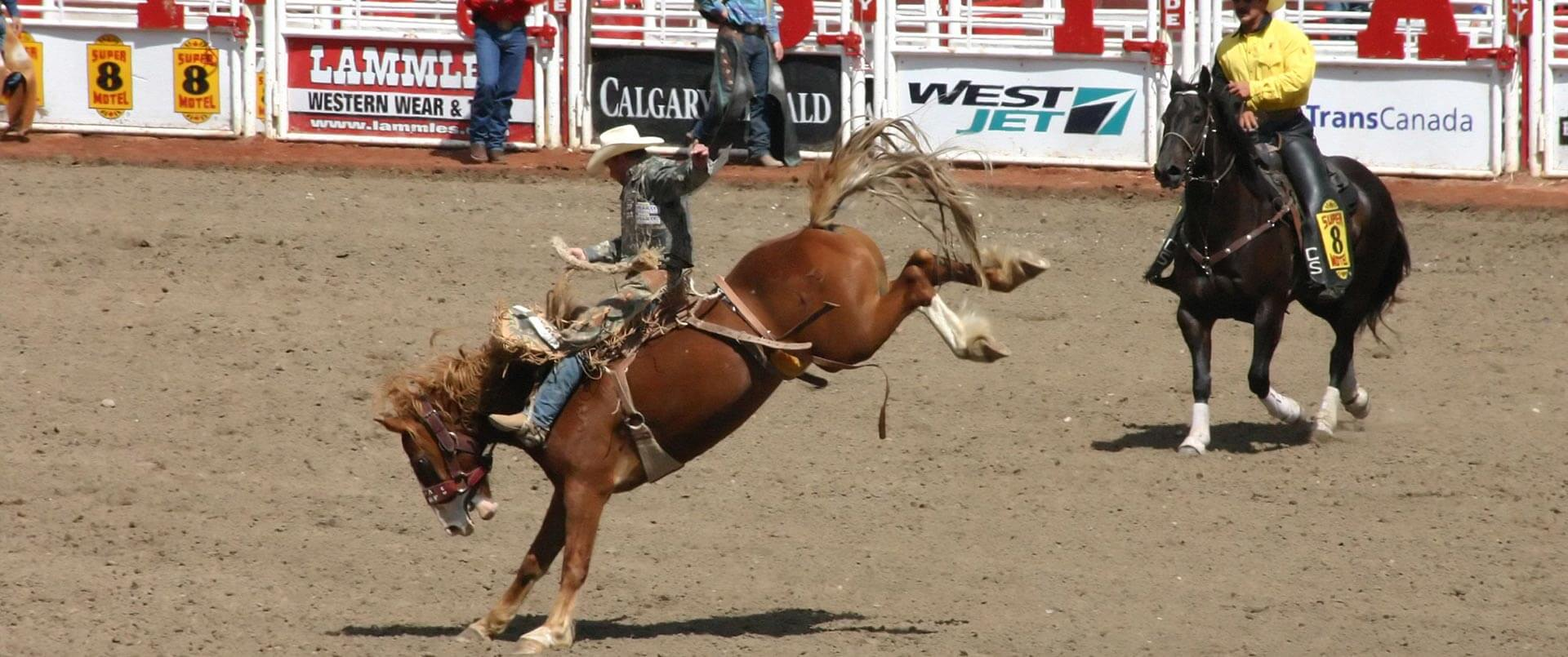 Extension: Calgary Stampede