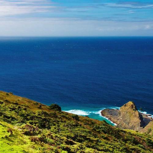 19 Day New Zealand Rail, Cruise & Coach