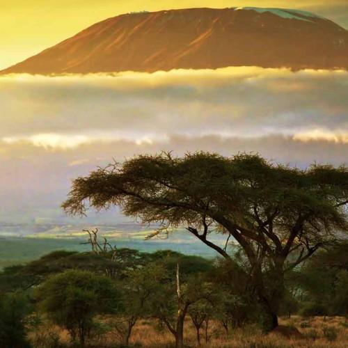Ultimate Tanzania