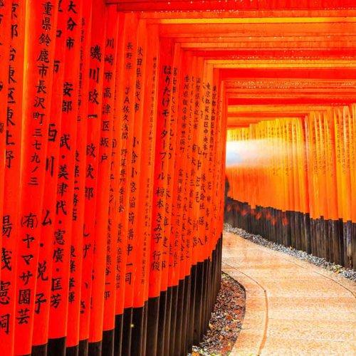 Explore Japan