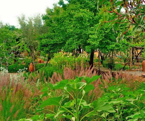 Les Jardins de Skoura