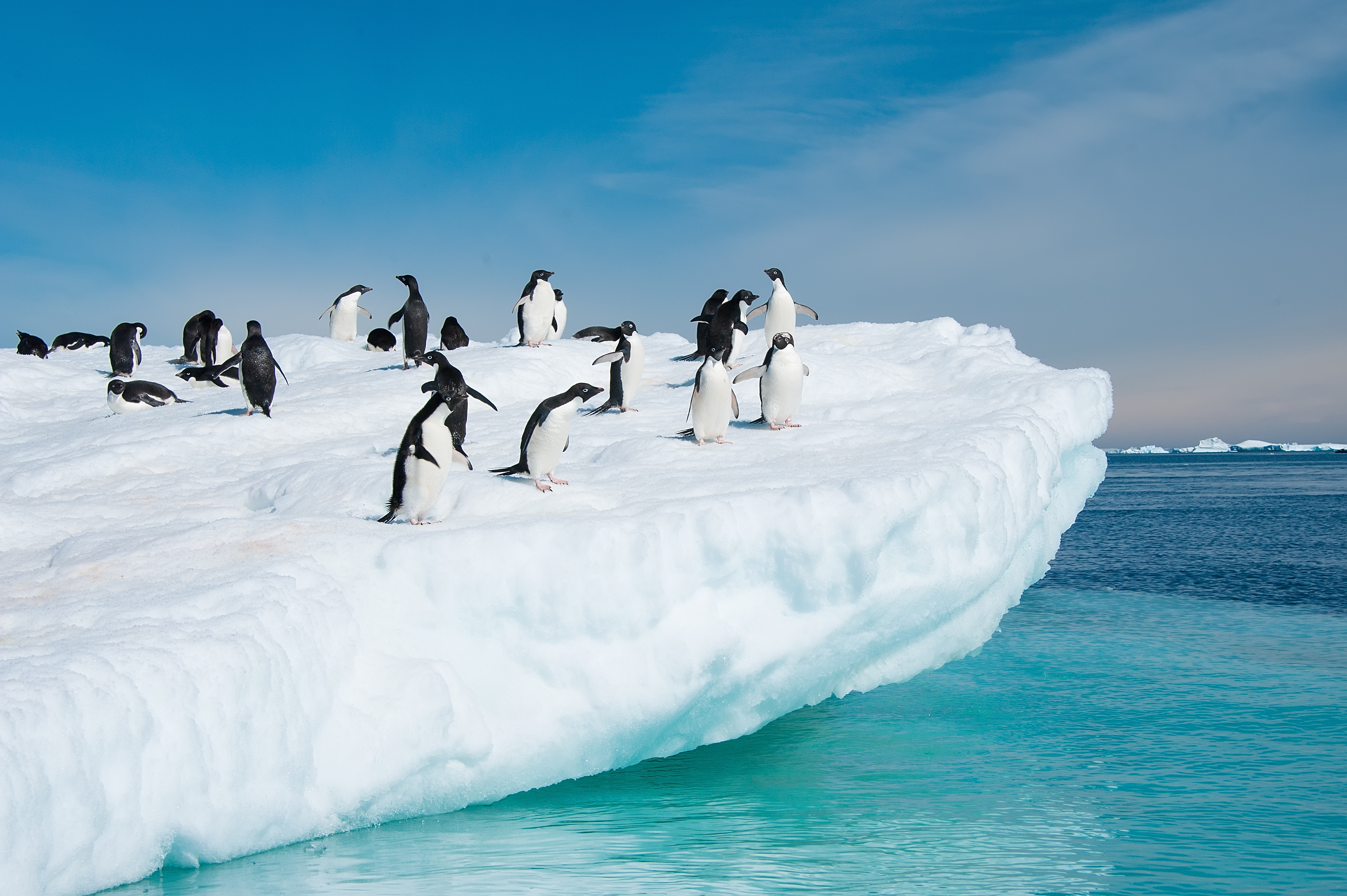 Antarctic Circle Cruise
