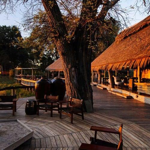 Mombo Camp, Okavango