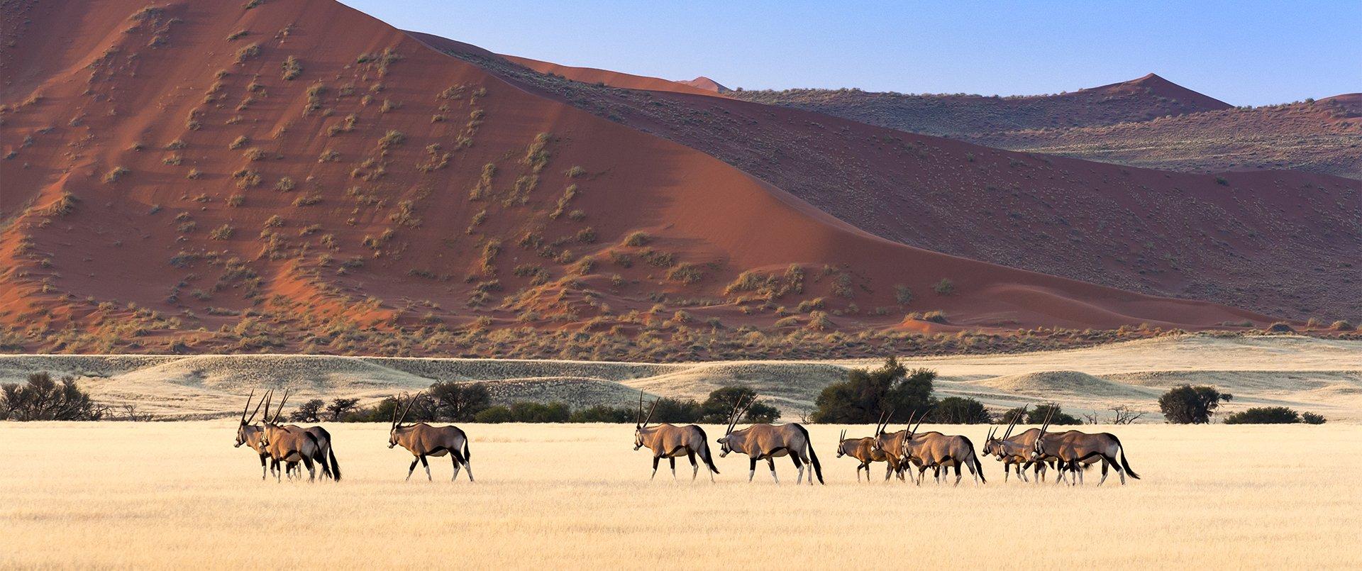 Epic Namibia