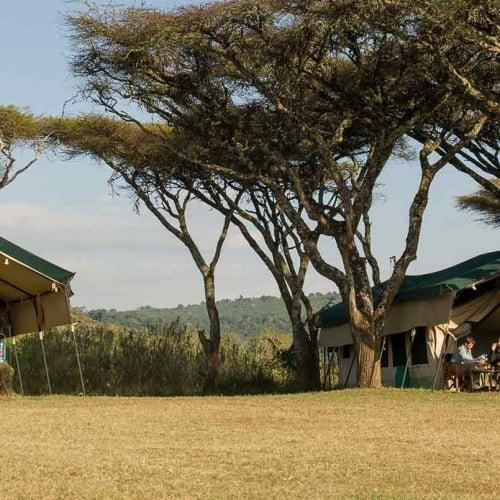 Sanctuary Ngorongoro Crater Camp, Ngorongoro