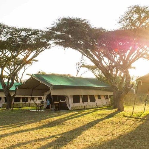 Sanctuary Serengeti Migration Camp, Serengeti