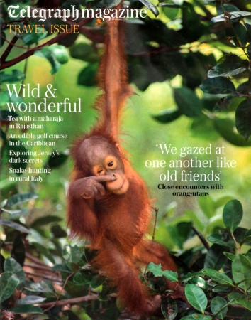 Extract-Pages-From-Durrell-Telegraph-Magazine--Cover.ed
