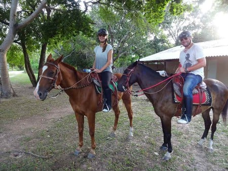 Cat-on-horse-back-at-Rui-Mutum,-Pantanal