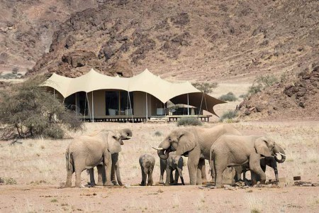 Hoanib_Skeleton_Coast_exterior-with-elephants