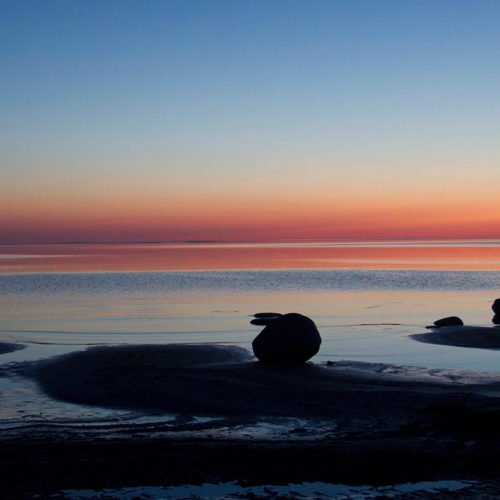 Estonia with Wild Insights