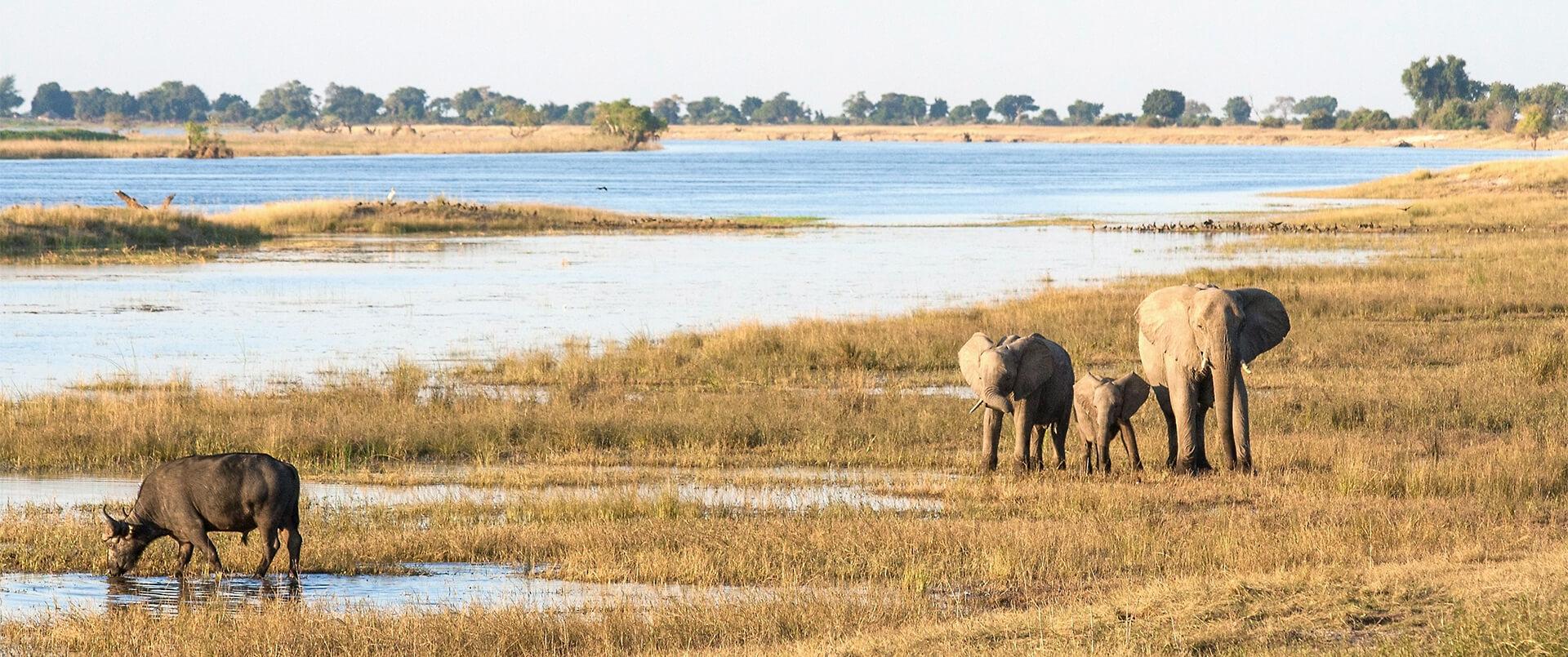 Botswana and Falls Explorer