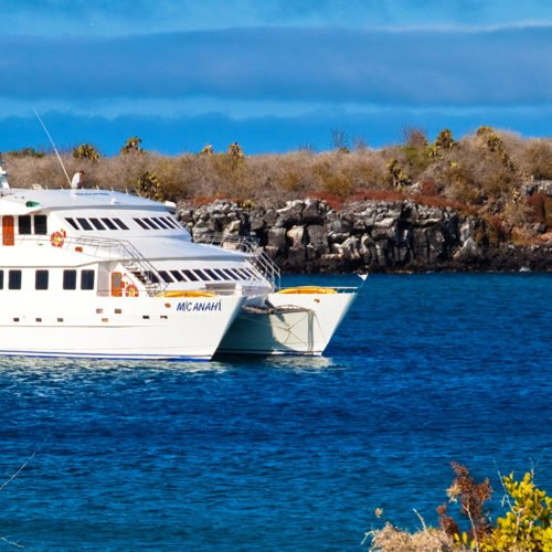 Galapagos and the Anahi Cruise