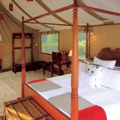 The Ultimate Travelling Camp, Kohima Camp, Nagaland