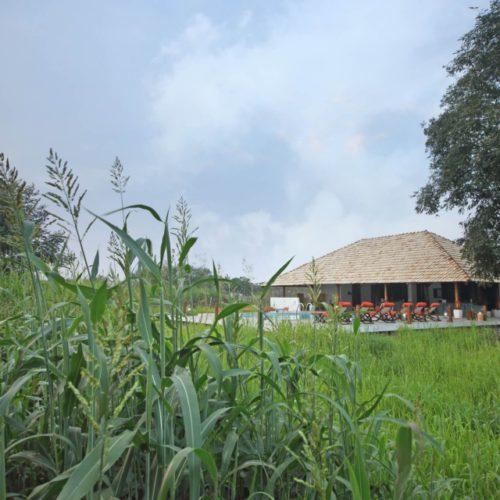 Svasara Jungle Lodge, Tadoba-Andhari Tiger Reserve