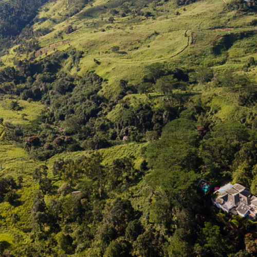 Ashburnham Estate, Kandy