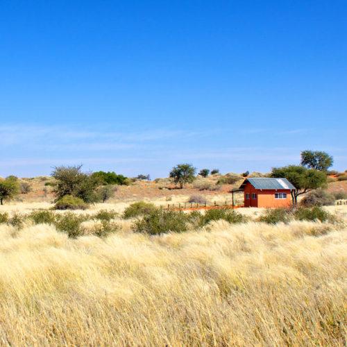 Bagatelle Kalahari Game Ranch, Kalahari