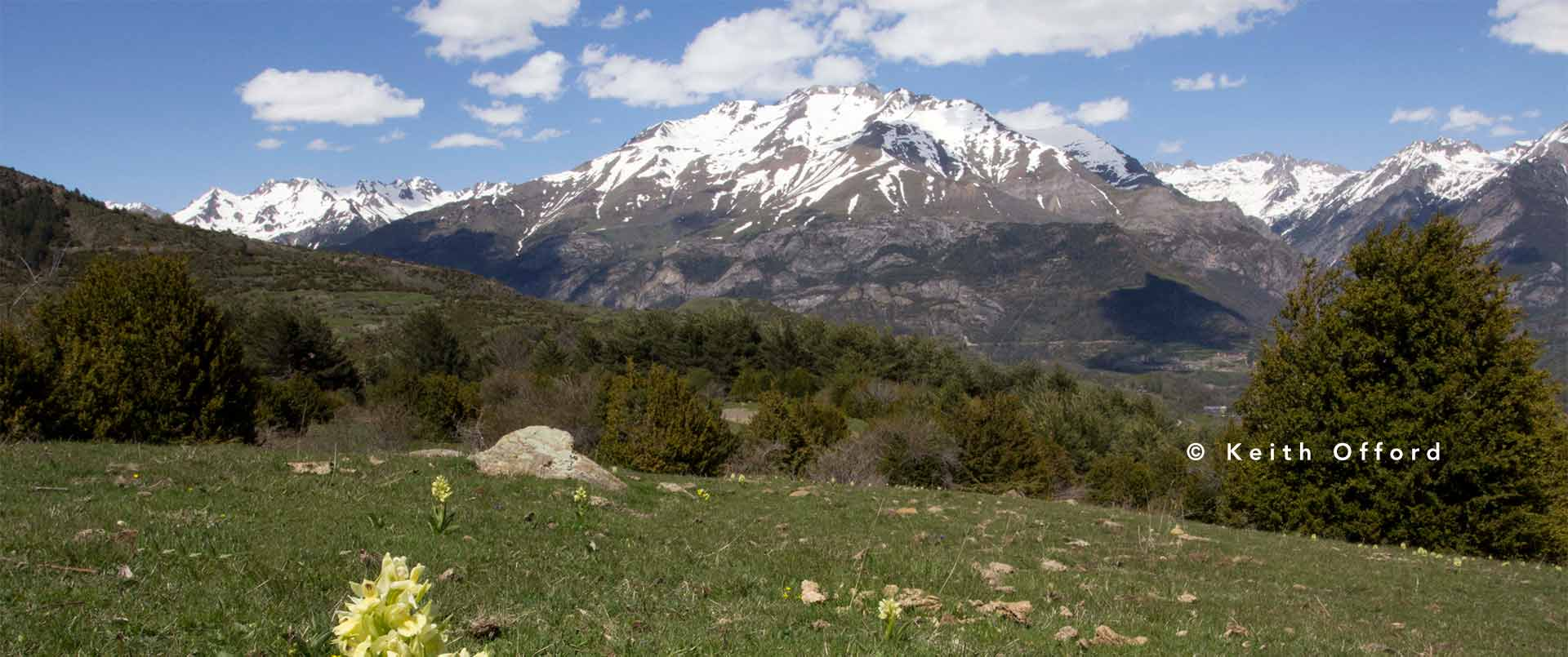 Spanish Pyrenees with Wild Insights