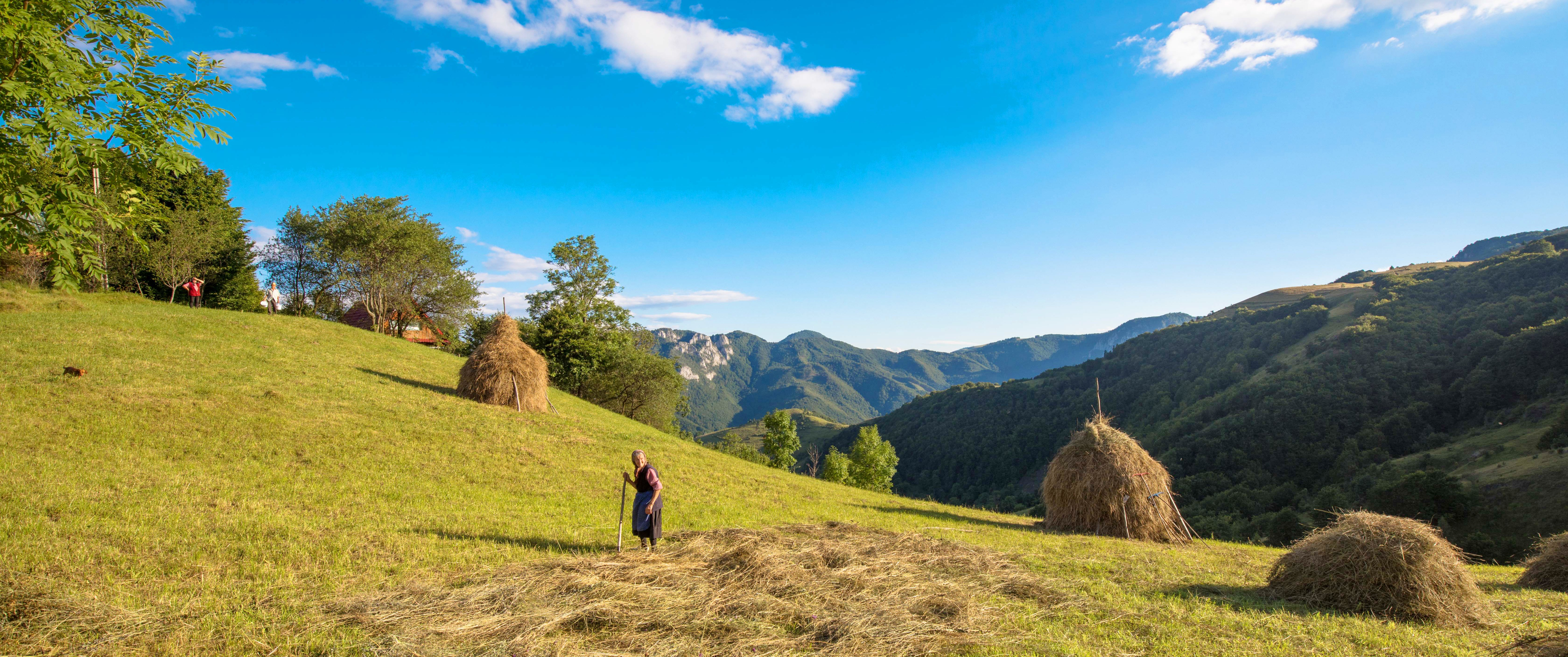Romania: Colours and Flavours
