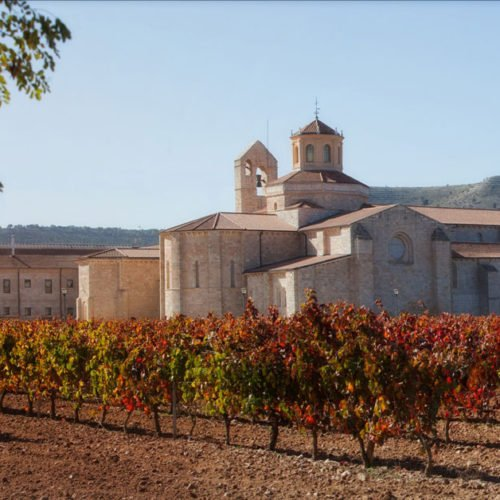 Castilla Termal Monasterio de Valbuena, San Bernardo