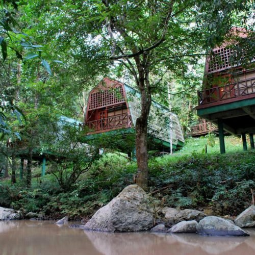 Tabin Wildlife Resort, Sabah