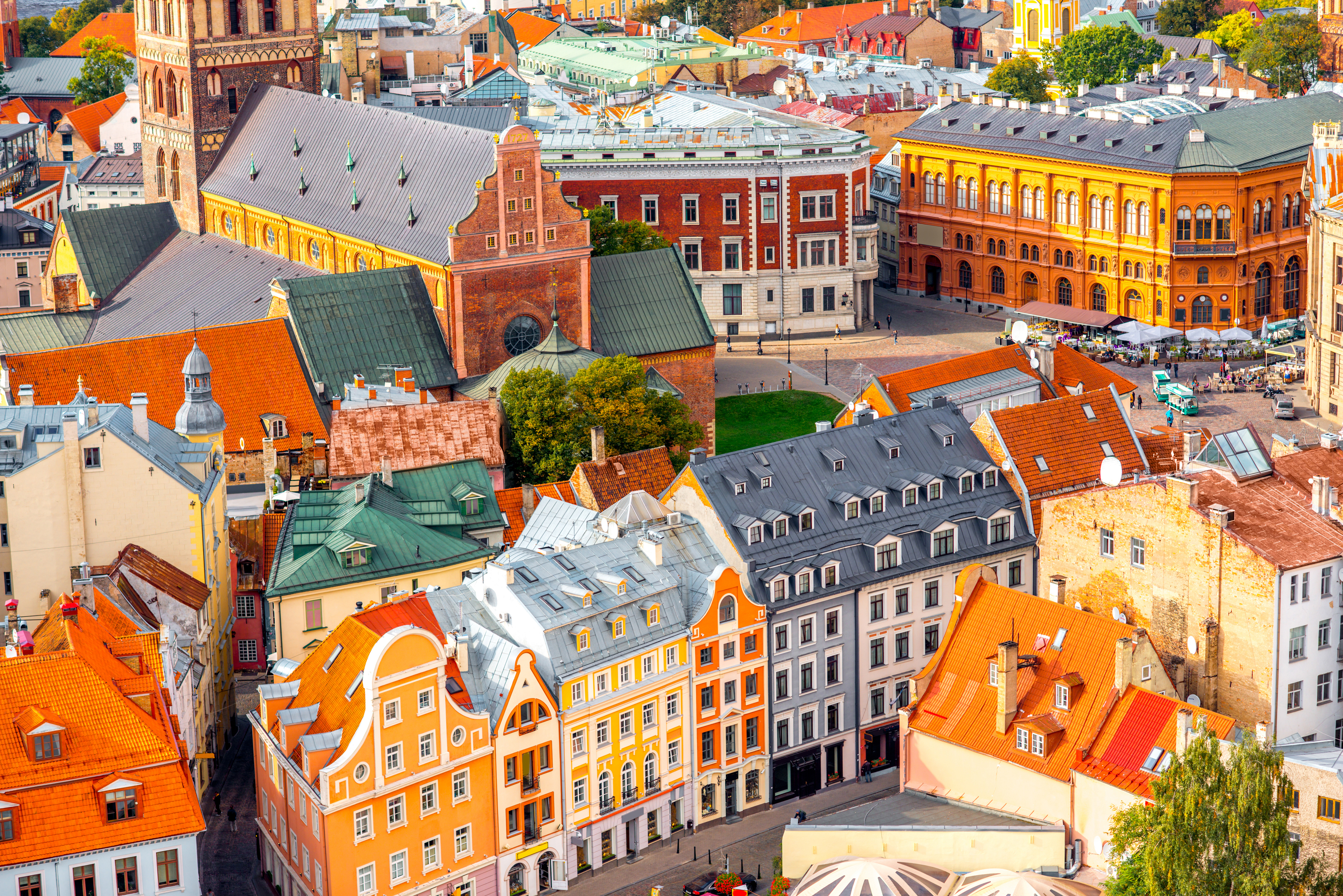 Riga and  Vilnius: With Tania Illingworth