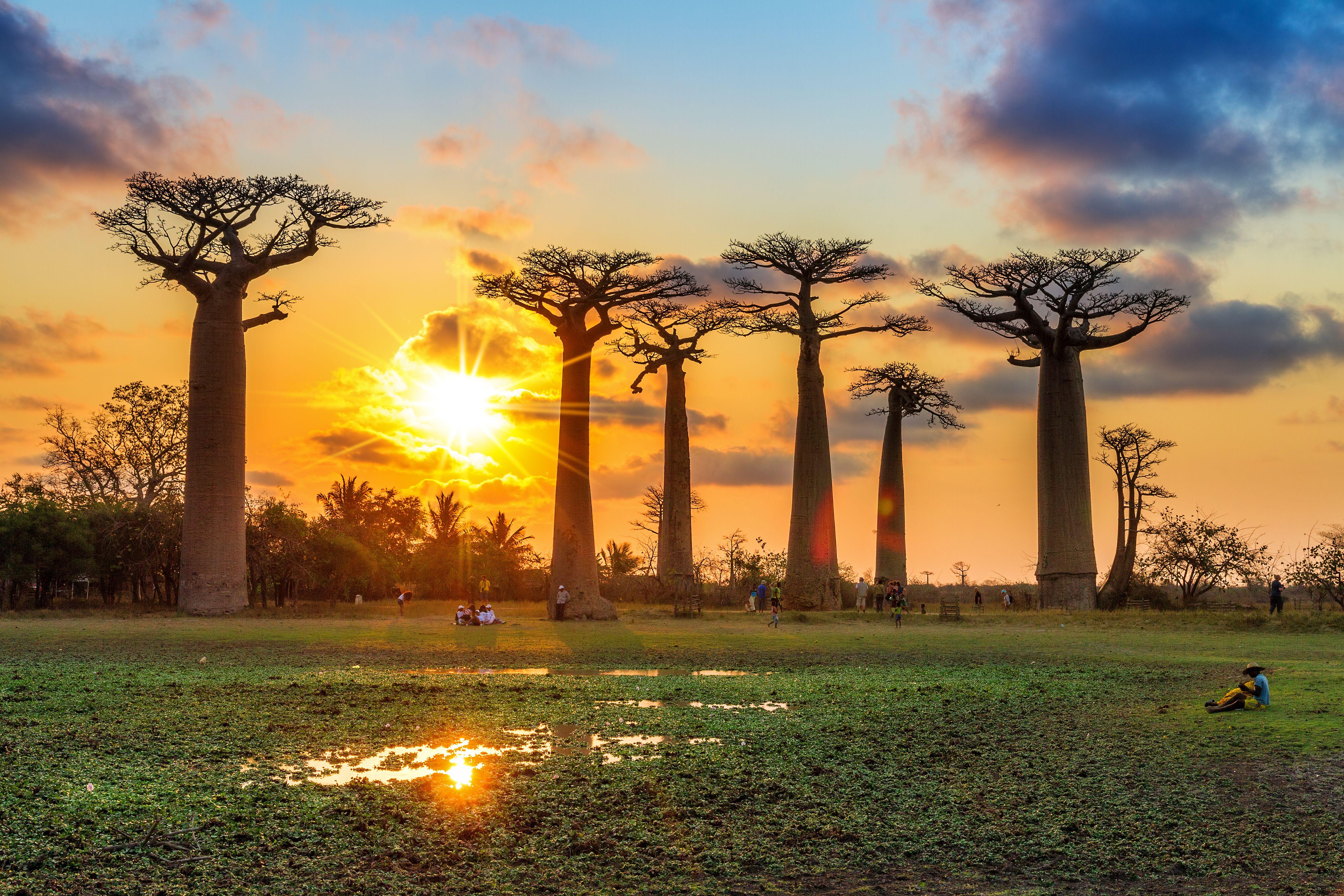 Simply Madagascar