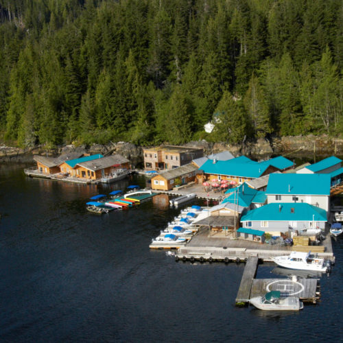 Knight Inlet Lodge, Great Bear Rainforest