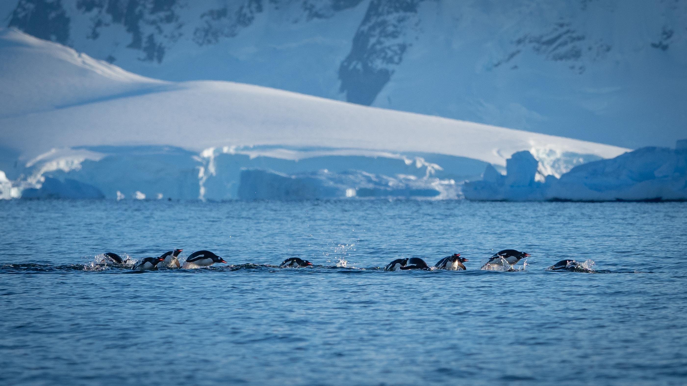 Journey Below the Antarctic Circle