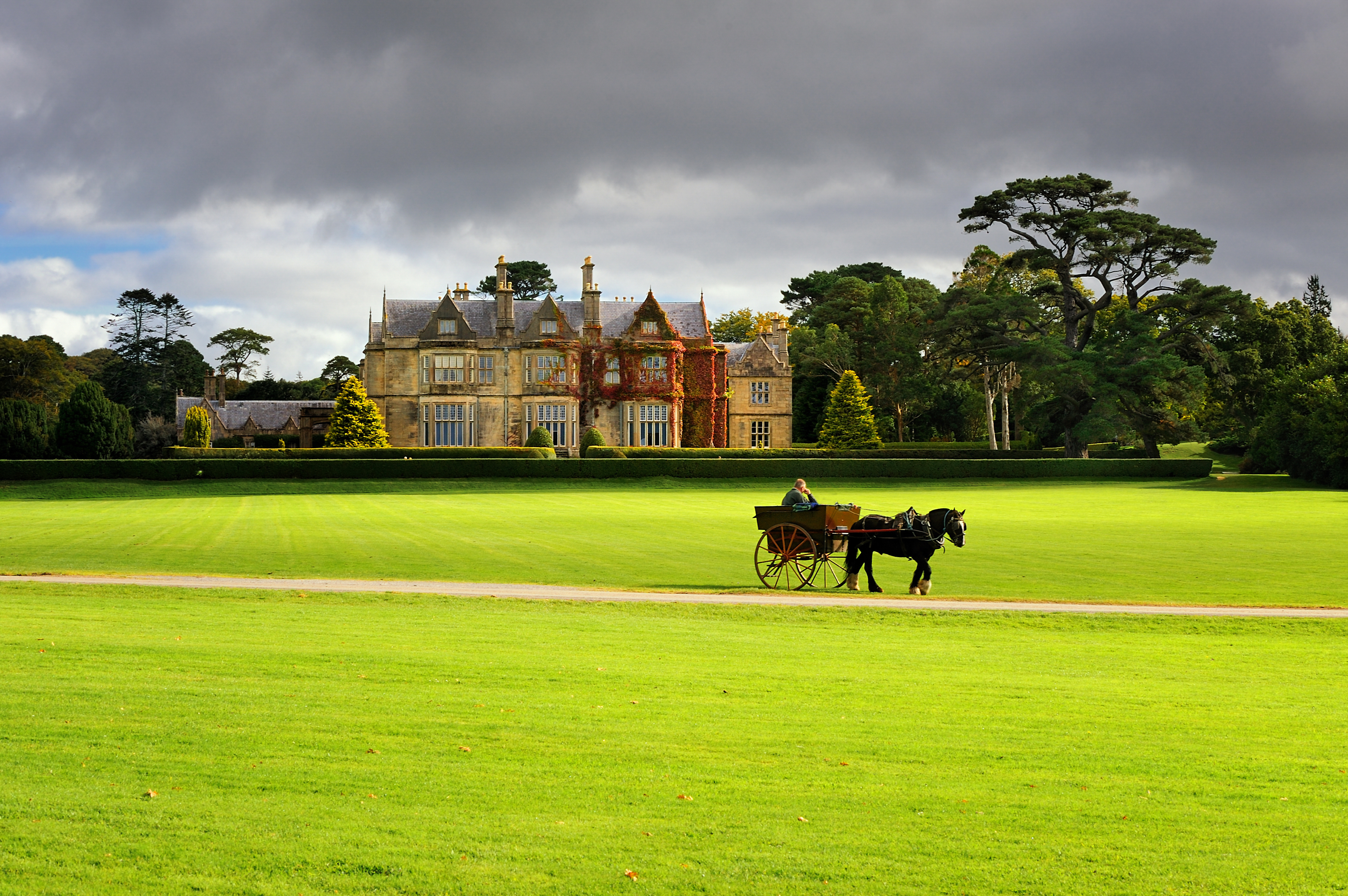 Irish Gardens, Houses and Horses: The Inside Track