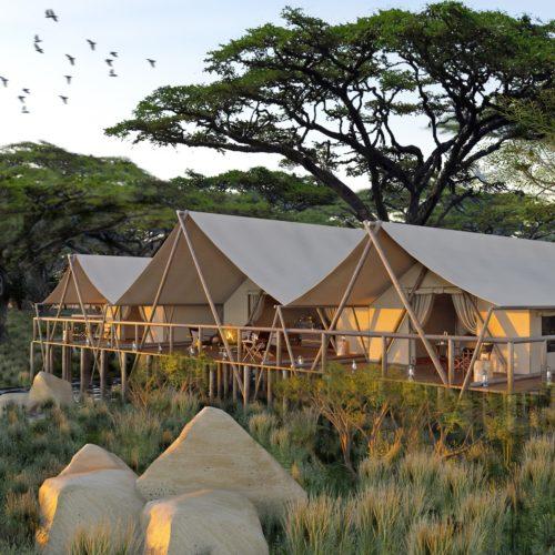 Mara Nyika, Naboisho Conservancy