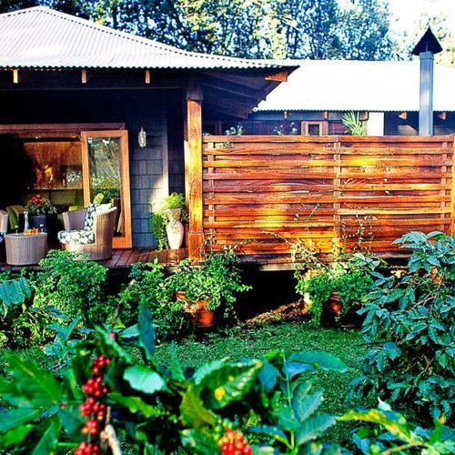 Arusha Coffee Lodge, Arusha