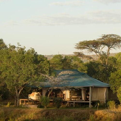 Ngare Serian, Masai Mara